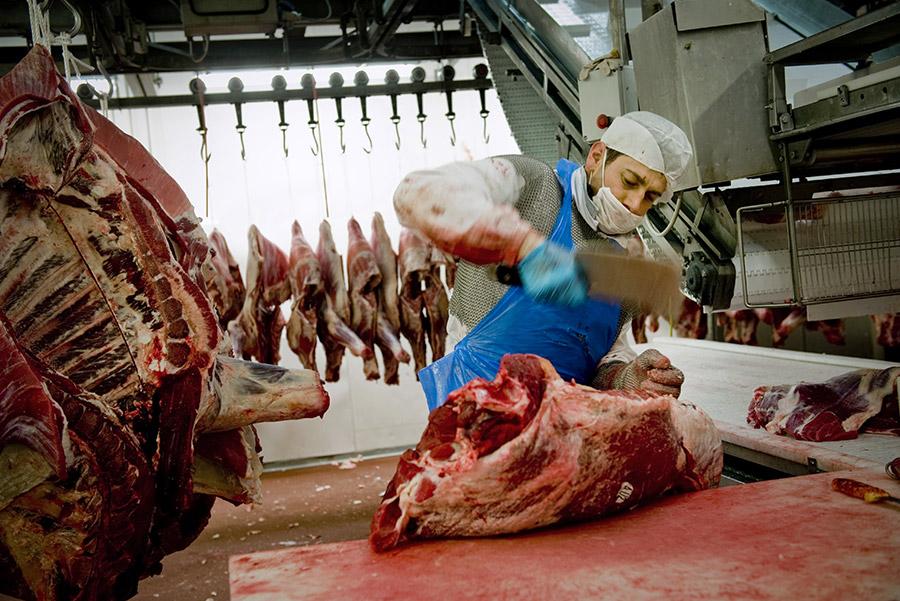 ivano-di-maria-coop-carne-04