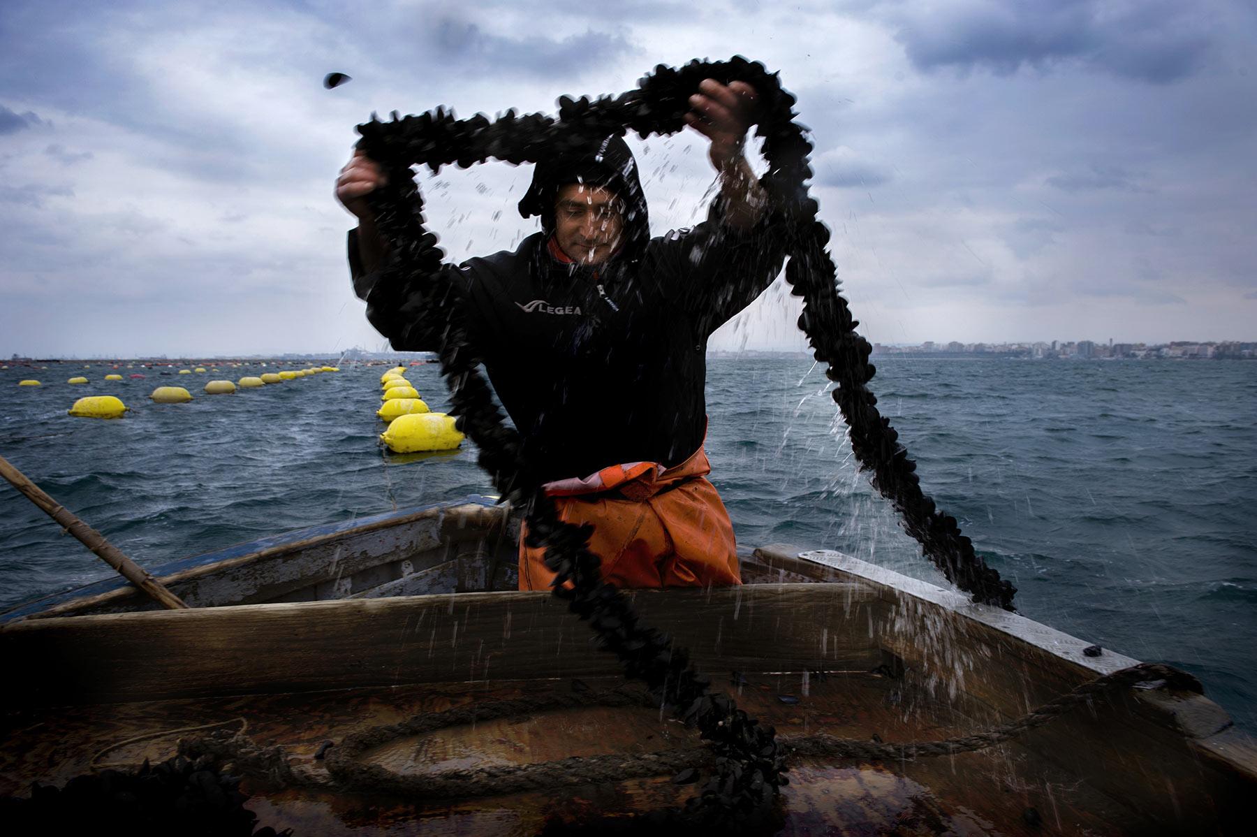 ivano-di-maria-coop-pesce-01